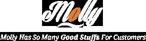 Interior – WP Molly – Responsive WooCommerce WordPress Theme