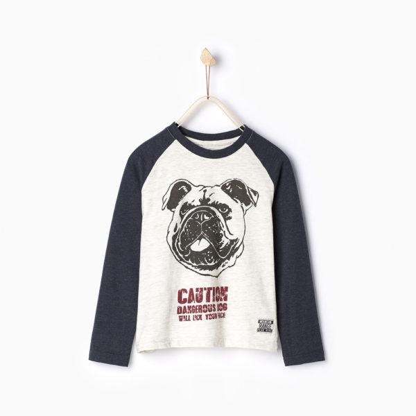 dog-top